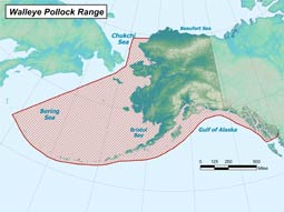 Walleye Pollock range map