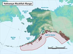 Yelloweye Rockfish range map