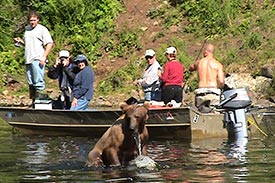 Boaters viewing bear in water